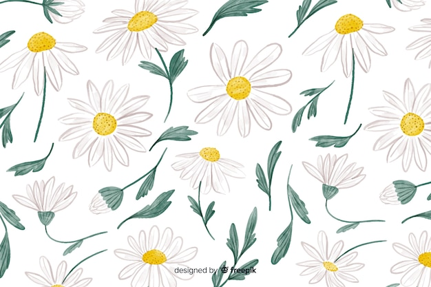 Floral background with watercolor daisies