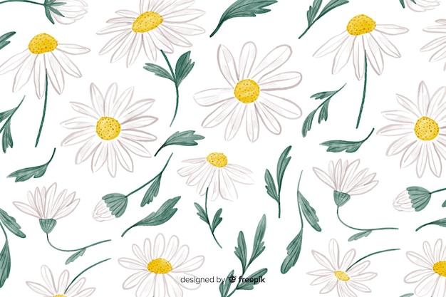 水彩画のヒナギクと花の背景