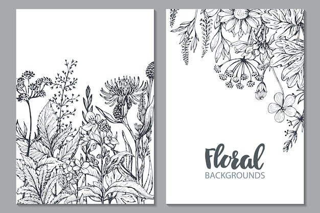 Floral backgrounds with hand drawn herbs and wildflowers monochrome