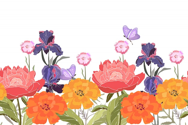花のボーダー。牡丹、アイリス、カーネーション、マリーゴールド、マンジュギク。分離された蝶と夏の花
