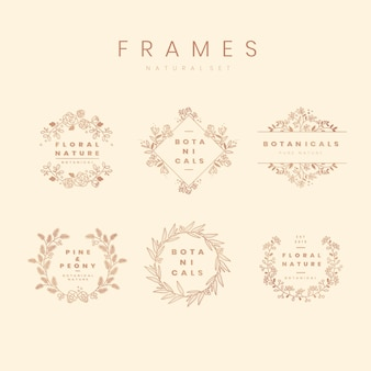 Floral botanical frame collection