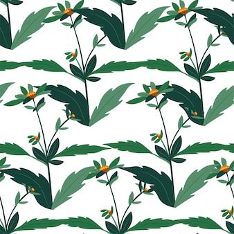 葉と花のパターンを持つ花の植物学