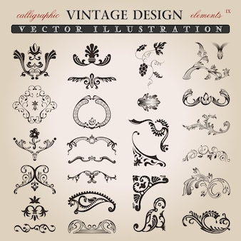 Floral calligraphic vintage design elements