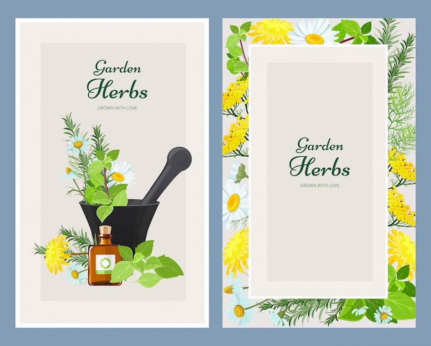 Floral cards, herbalism medicine products wild herbs and flowers vintage