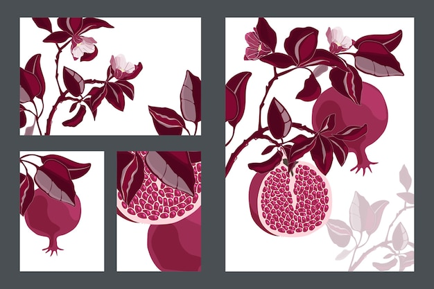 Floral cards, templates. pomegranate tree with maroon fruits and leaves. ripe pomegranates with grains and flowers isolated on a white background.