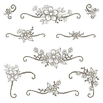 Floral corners dividers and lines decoration