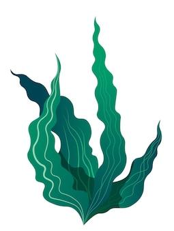 수족관이나 바다 또는 바다 바닥을 위한 꽃 장식. 수중에서 자라는 잎이 있는 고립된 식물입니다. 장식용 이국적인 열대 해상 식물. 평면 스타일의 sealife 벡터