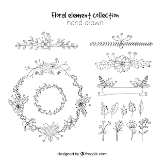 Floral element collection with hand drawn style