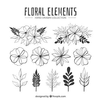 手描きのスタイルで花の要素のコレクション