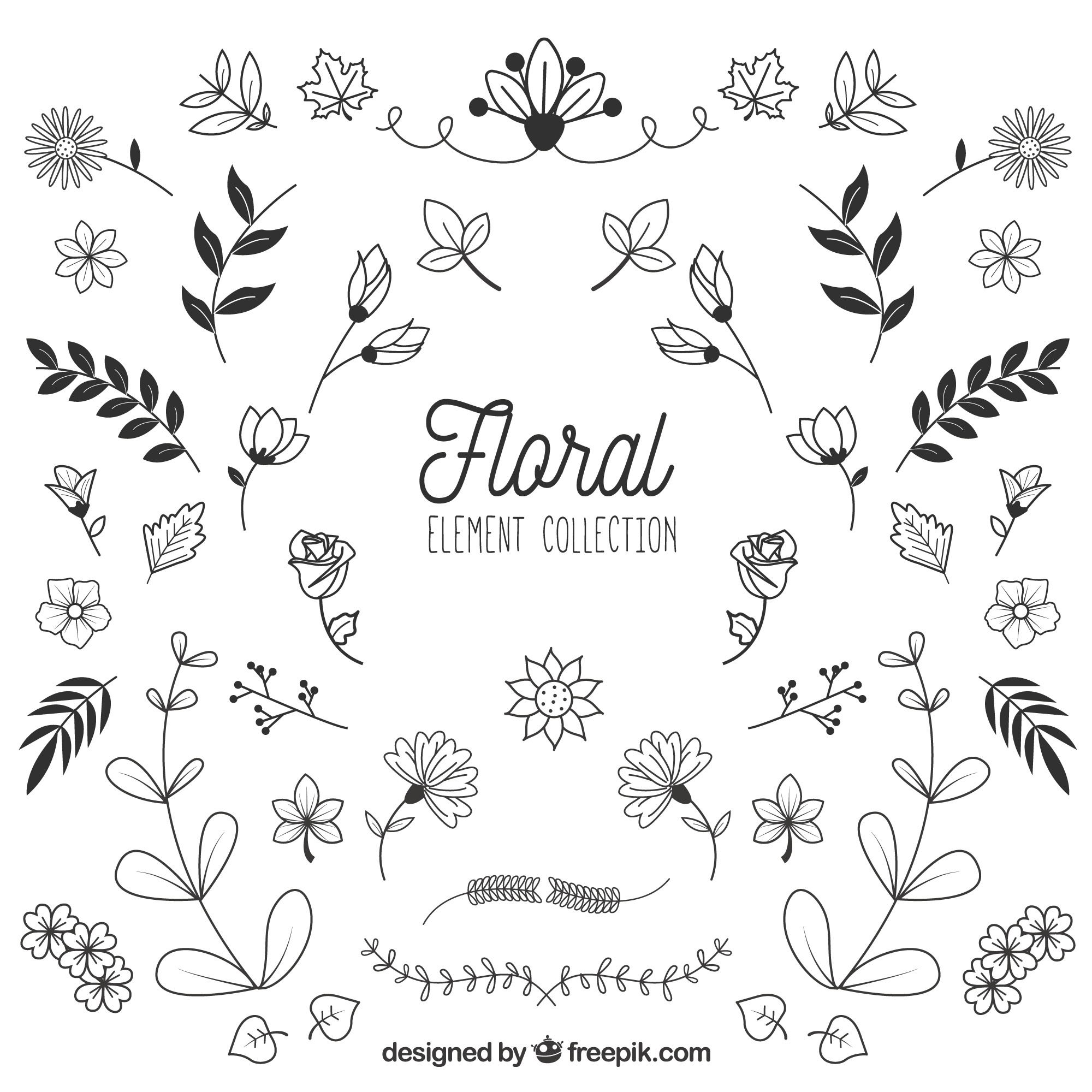 Floral elements collection in hand drawn style