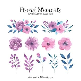 水彩スタイルの花の要素コレクション