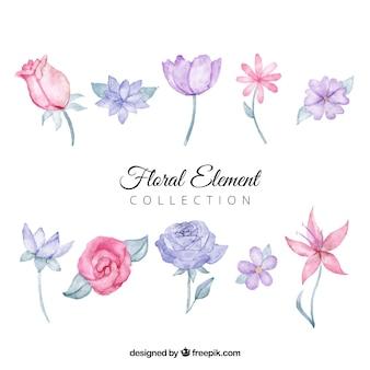 수채화 스타일에서 꽃 요소 컬렉션