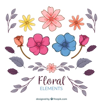 Floral elements collection with different species