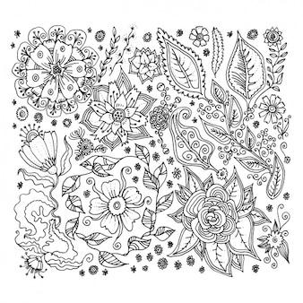Elementi floreali di design