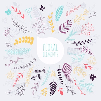 Floral elements. hand drawn