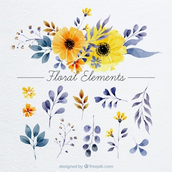 Floral elements in watercolor style