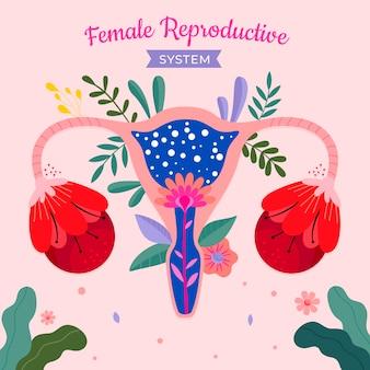 Цветочная женская репродуктивная система иллюстрирована