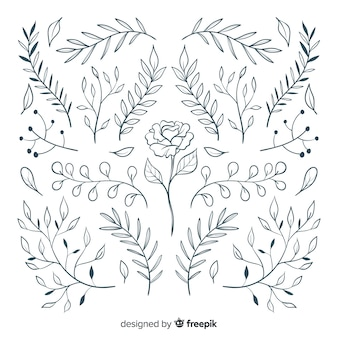 Floral hand-drawn ornament collection