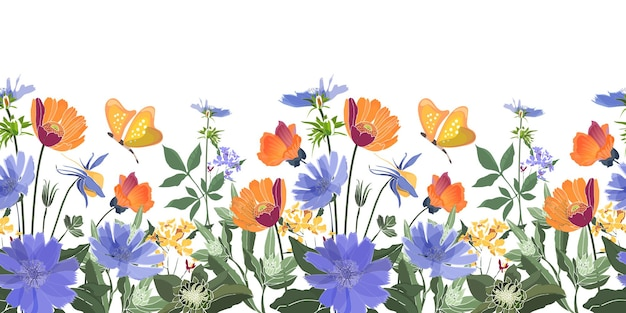 Floral seamless border. summer flowers, green leaves. chicory, mallow, gaillardia, marigold, oxeye daisy. orange, blue flowers, butterflies isolated on white background.