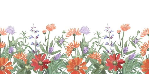 花のシームレスなボーダー。夏の花、ハーブ、葉。