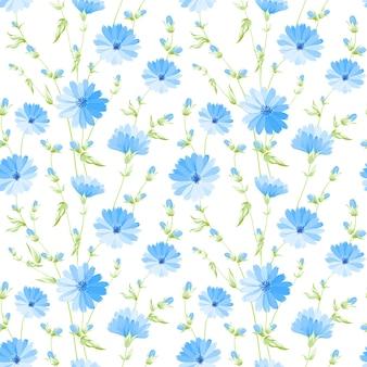 シームレスな花柄。白い背景に咲くチコリ。