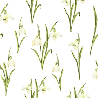 Floral seamless pattern. blooming snowdrops on white background.
