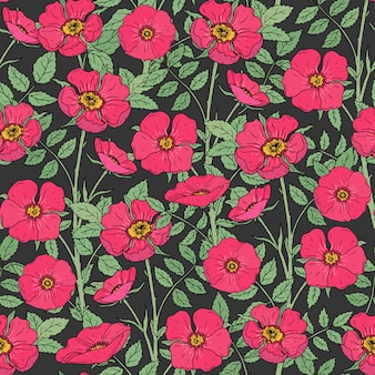 Floral seamless pattern with blooming dog roses, green stems and leaves on dark background.