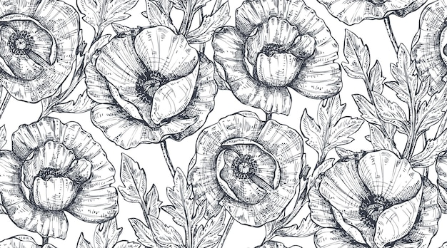 Floral seamless pattern with hand drawn poppy flowers and leaves. monochrome vector illustration in sketch style.