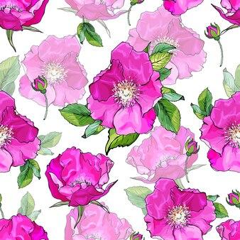Цветочный фон с розовыми цветами роз
