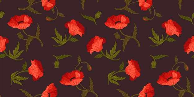 Floral seamless pattern with poppies. vector design