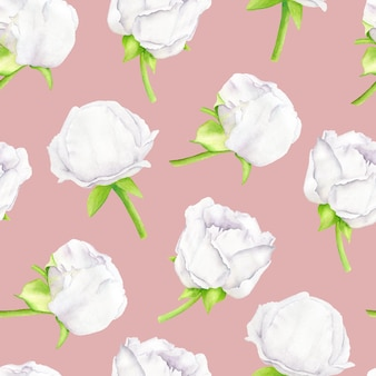 Floral seamless pattern with white peony flowers on pink