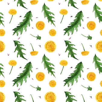 Floral seamless pattern with wild dandelion