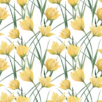 Floral seamless pattern with wild tulips