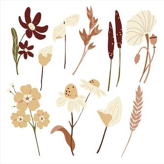 茶色の色合いに設定された花。装飾的な秋の野花。フラットなイラスト。