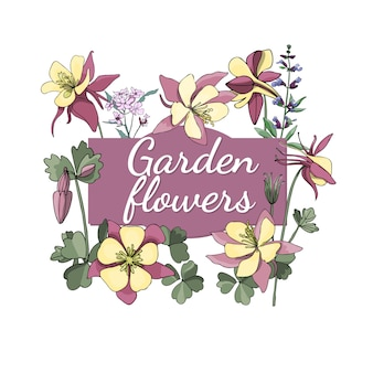 Floral set. summer and spring isolated garden flowers and herbs with sage, columbine.