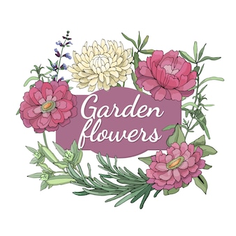 Floral set. summer and spring isolated garden flowers and herbs with zinnia, peony, tarragon, aster, rosemary, sage.
