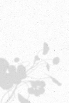 白い大理石の背景に花の影