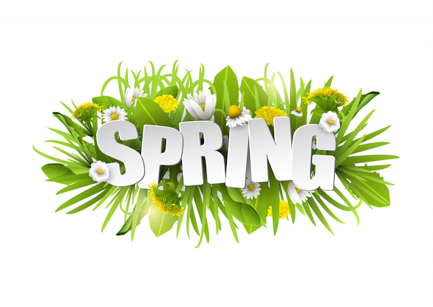 Floral spring background with flowers.