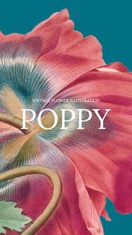 공개 도메인 작품에서 리믹스된 양귀비 배경이 있는 꽃 템플릿 벡터