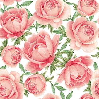 花の水彩画のシームレスパターンエレガントな牡丹繊細なピンク