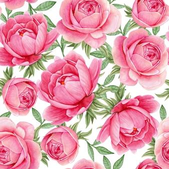 花の水彩画のシームレスパターンエレガントな牡丹鮮やかなピンク