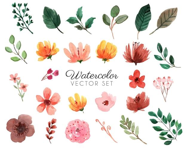オレンジと茶色の花と緑の葉と花の水彩セット