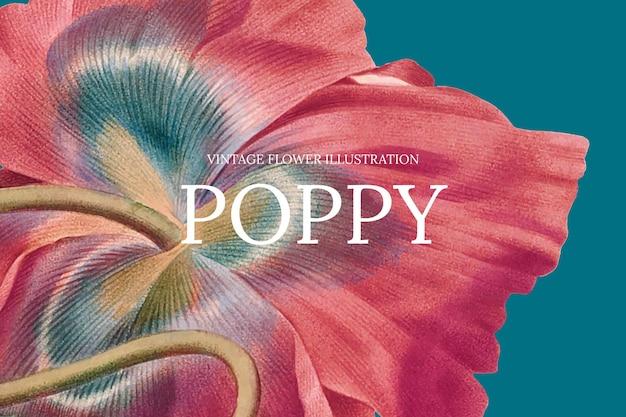 공개 도메인 작품에서 리믹스된 양귀비 배경의 꽃 웹 배너 템플릿 무료 벡터
