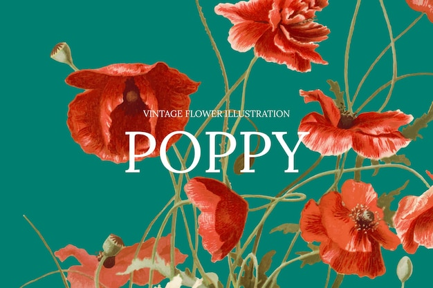Floral web banner template with poppy background, remixed from public domain artworks