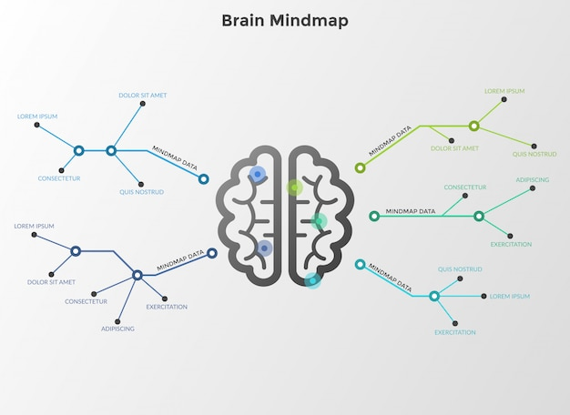 Flowchart or workflow diagram with brain in center connected to text boxes by lines. concept of mind map or scheme. modern infographic design template
