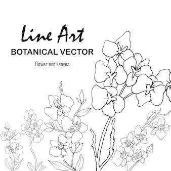 Цветок и лист рисованной ботанические иллюстрации с штриховой графикой
