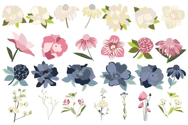 꽃과 식물 격리 세트 에키네시아 장미 피는 야생화 및 기타 꽃이 만발한 정원