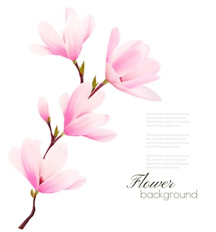 Цветочный фон с цветущей ветвью розовых цветов.