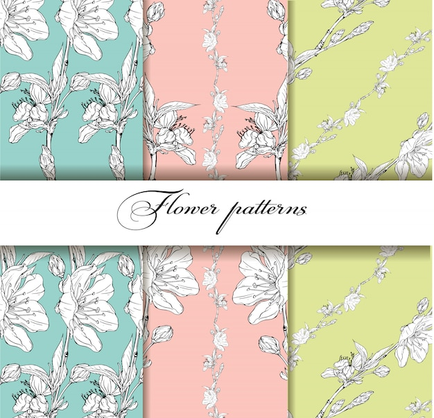 Flower background with spring flowers