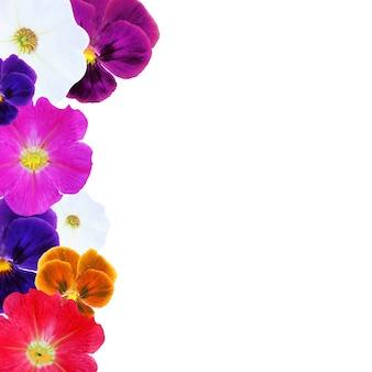 花のボーダー、グラデーションメッシュ、白い背景で隔離